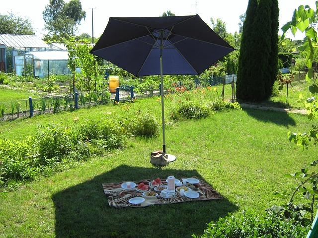 shaded picnic_CC