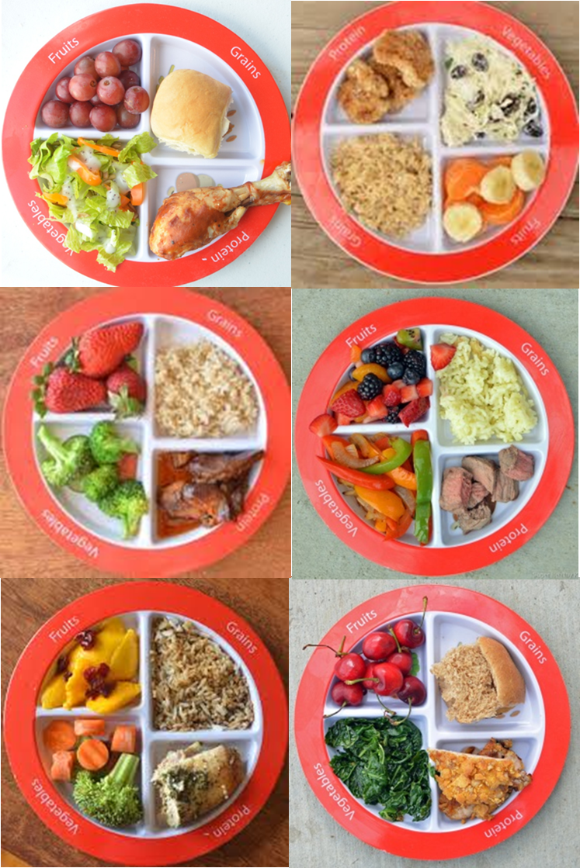 Myplate Dinner Examples WordPress Com
